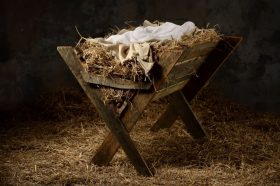 Nativity Crib